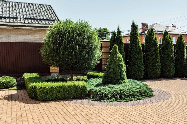 Фото 1 Озеленення, благоустрій території, ландшафтний дизайн 339531