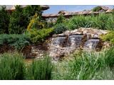 Фото 4 Озеленення, благоустрій території, ландшафтний дизайн 339531