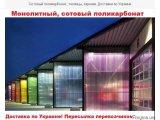 Фото  1 Монолитный, сотовый поликарбонат Borrex (made in ITALY) для крыши, перегородок, парника, теплицы 1974994