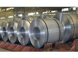 Фото  1 Оцинкованная сталь в рулонах, Пищевая жесть, листовой металл, сталь в штрипсах. 2248791
