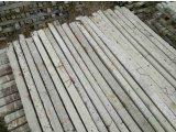 Фото 1 Стовпчики столбики виноградні для огорожі,теплиць,парканів Б/В 338470