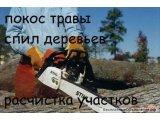 Фото 1 Спил дерева,демонтаж работы,земляные работы в ручную Одеса 341102