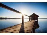 Фото 2 Надежная био защита древесины. 332827