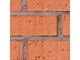 Фото  1 Кирпич пустотелый керамический М125 АГРОПРОМБУД (Борзна) 1264324
