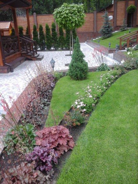 Фото 7 Озеленення, благоустрій території, ландшафтний дизайн 339531