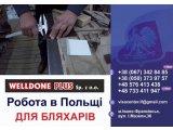 Фото 1 Польська фірма **WELLDONE PLUS** ЗАПРОШУЄ НА РОБОТУ 337703