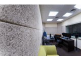 Фото  4 Звукопоглощающие потолочные и стеновые панели из древесной шерсти. Troldtekt Grey Fine (ширина волокна 4,5 мм). 2082487
