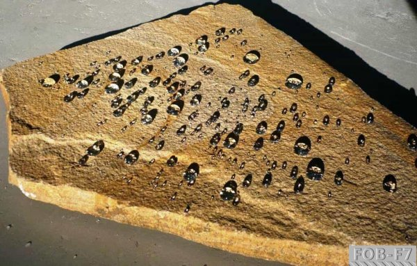 Фото 3 Защитная гидрофобная пропитка FOB-F7 338768