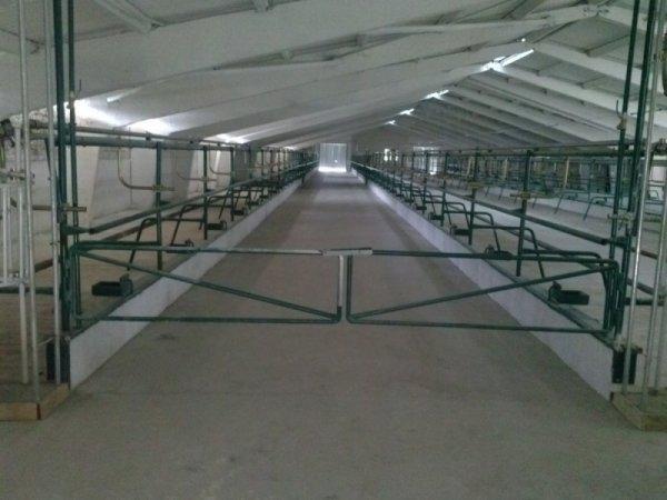 Фото 6 Реконструкція та будівництво ферм СВІНАРНІКІВ, КОРІВНІКІ 336116