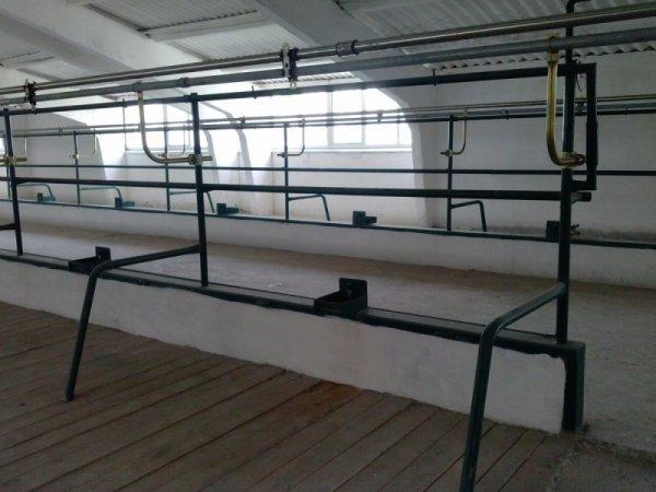 Фото 8 Реконструкція та будівництво обєктів АПК (свинарник, КОРІВНІКІ) 336115
