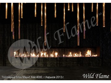 WildFlame