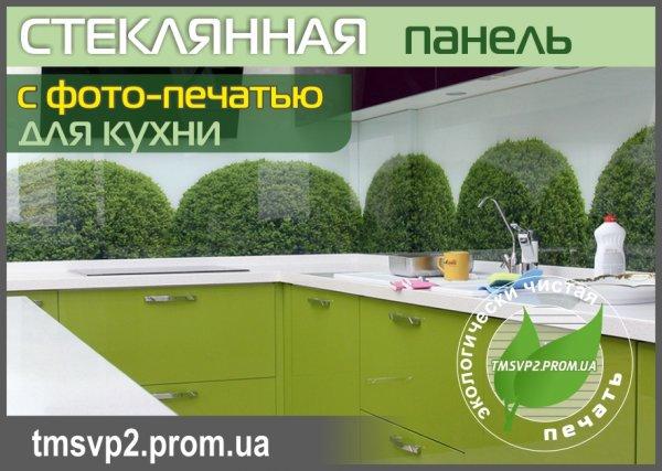 Фото  1 Стеклянный фартух для кухни 1401674