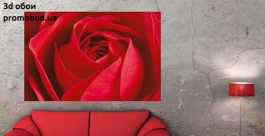 3d обои красная роза фото