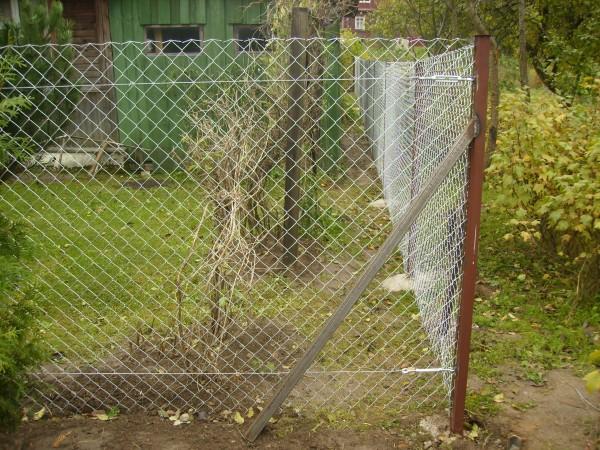 Забор своими руками из рабицы с фото