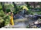 Фото  1 Сервісне обслуговування водойм 2318893