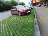 Фото 1 Плитка газонна Екологія 331077