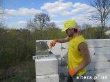 Фото 1 Строительные услуги и дизайн-проекты от Компании Альтеза 334859
