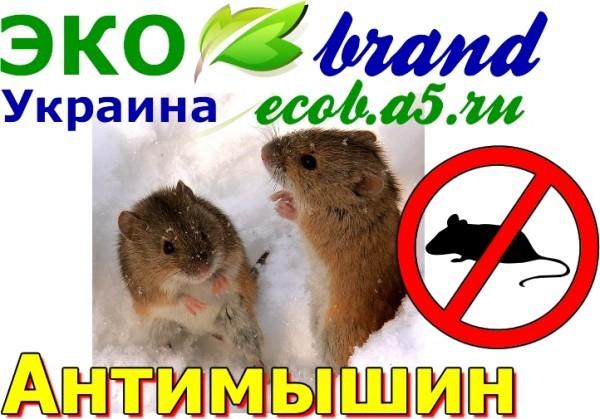 Антимышин, купить Антимышин, Антимышин опт, оптом Антимышин, цена на Антимышин, против мышей и крыс