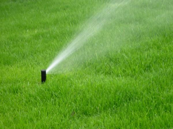 Автоматический полив газона, участка