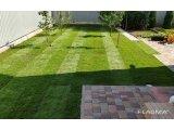 Фото 1 Автополив. Устройство газона посевной рулонный газон 342907