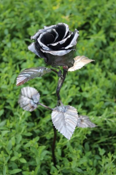 авторские кованые розы