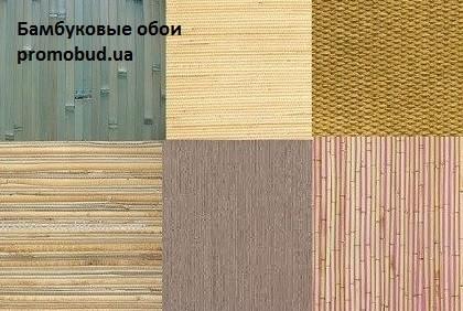 бамбуковые обои фото