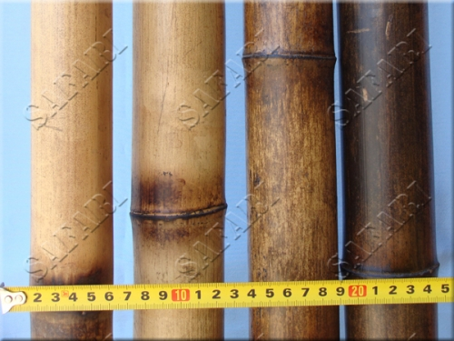 Бамбуковый ствол Обожженный: длина 3м;диаметр 5-6см;