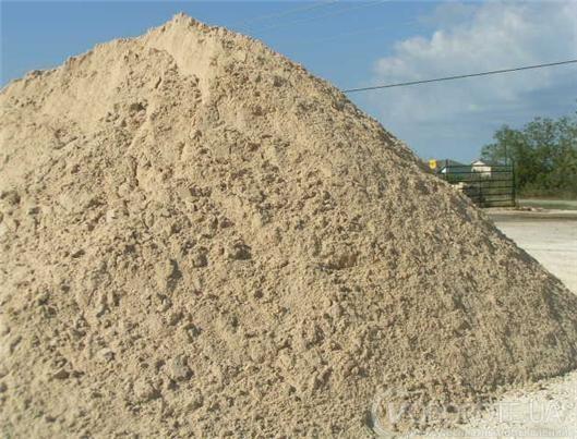 Беляевский песок в Одессе (сеянный)