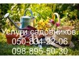 Фото 1 Услуги садовника. Комплексный уход за садом 342971
