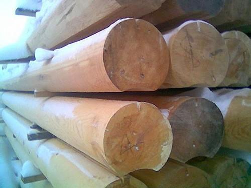 Бревно оцилиндрованное сибирская лиственница
