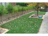 Фото  4 Декоративна штучна трава. Трава для ландшафту, інтерєру, саду. 2063234