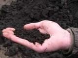 Чернозем для огорода сада отличного качества (песок речной, песок овражный),