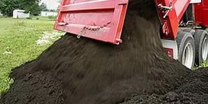 Чернозем это лучшее удобрение способное превратить даже неплодородную почву в идеальную среду для посадки растений