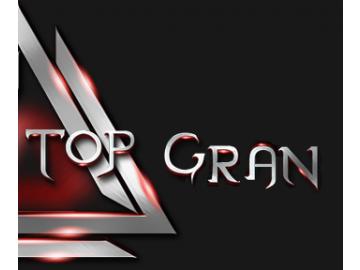 ЧП Top Gran