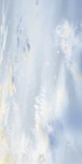 Crema Marfil (Sunrise) бежевый(Декор) 300х600размер, мм (доставка)
