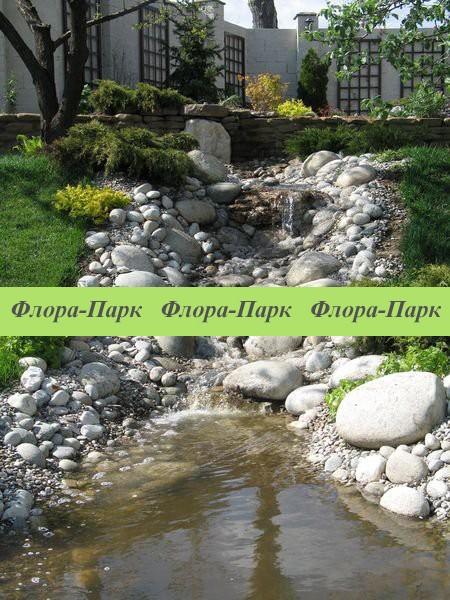 Декоративна водойма, струмок, плавальний ставок, фонтан
