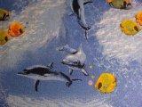 Фото  10 Детский ковролин Напол №5 10.5, 10 2228364