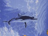 Фото  5 Детский ковролин Напол №5 2.5, 2 2228380