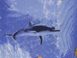 Фото  7 Детский ковролин Океан 2734225
