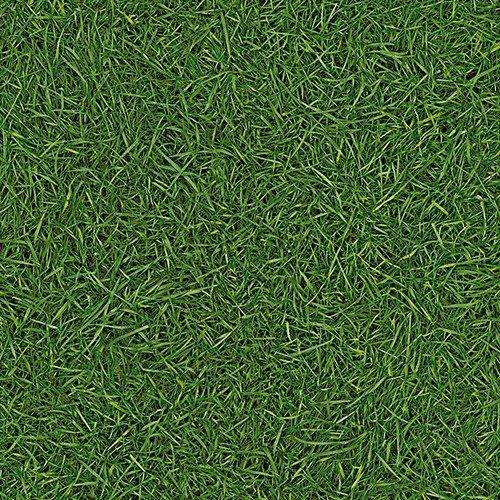 Фото  1 Детский линолеум Leoline Smart SURFACES Grass 25 1500 2134196