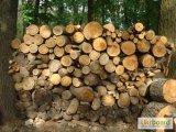 Фото 1 дубовые дрова 320742