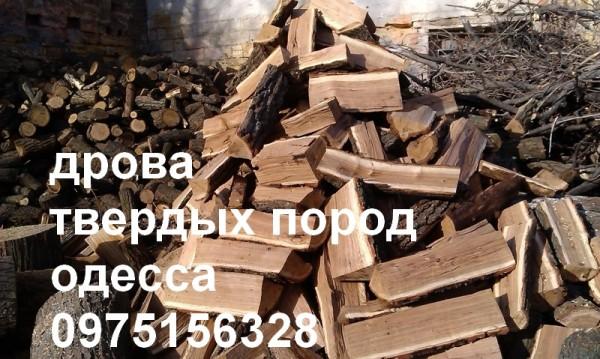 Дрова твердых пород Одессе цена от 280 гривен м куб . Дуб акация береза клен платан Доставка . Минимальный заказ 1 куба