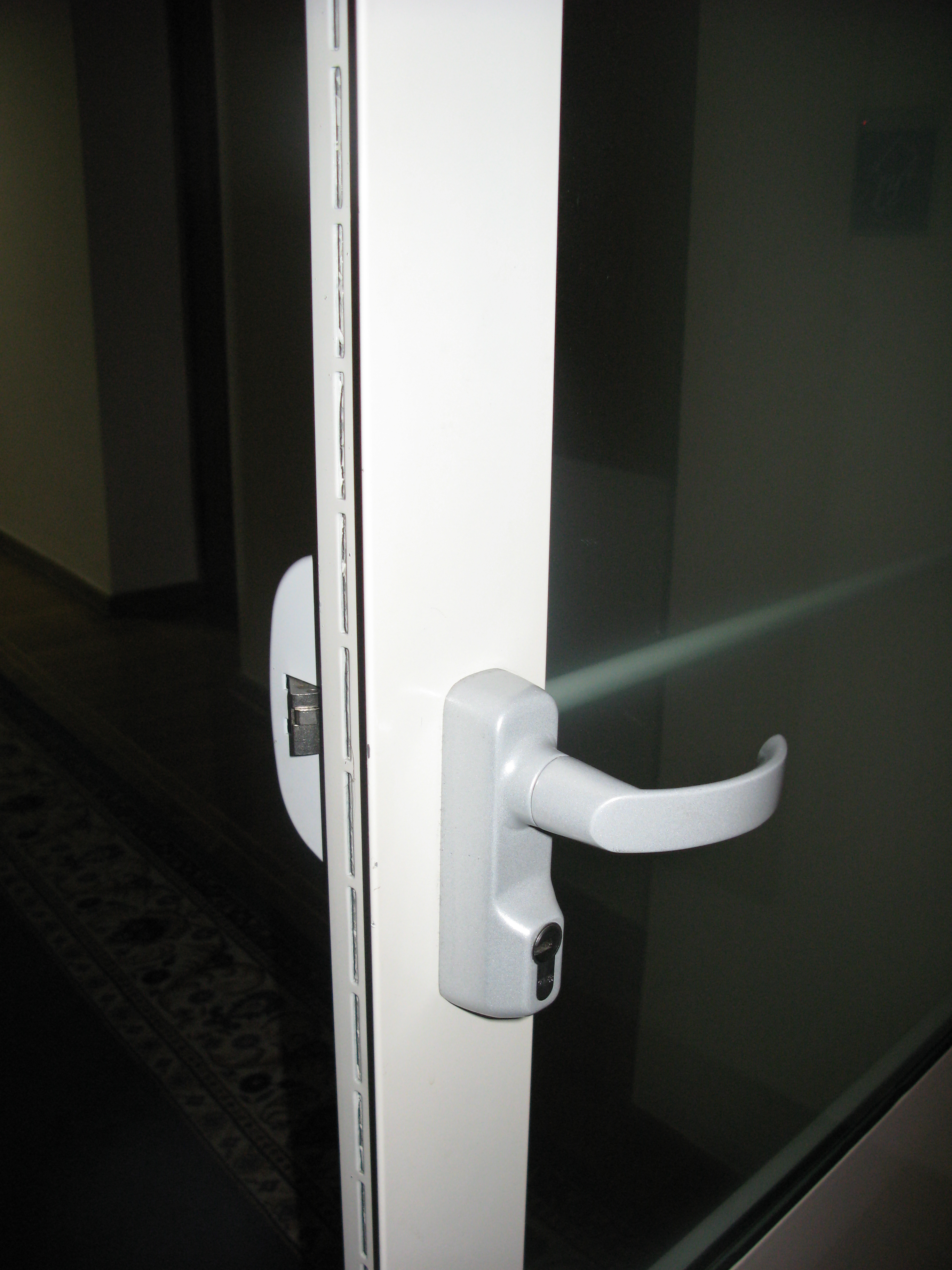 Дверь остекленная огнестойкая EI 30, ручка Panik, производство Dorma