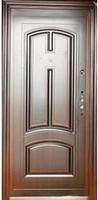 Двері вхідні металеві ТР-С 12 автолак