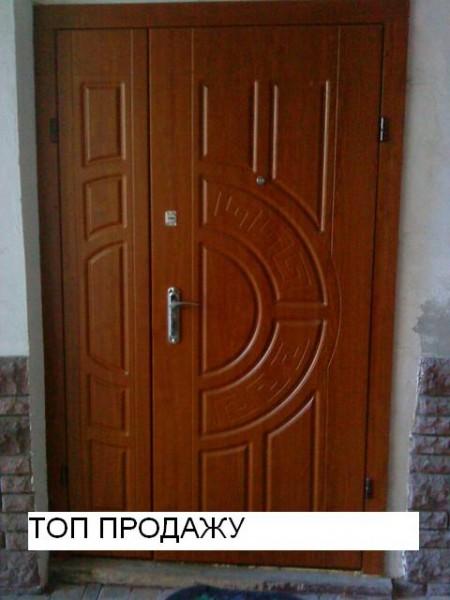 заказать дверь входную фрязино
