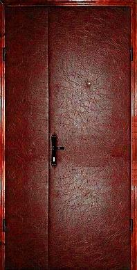 Двери входные полуторные в дом