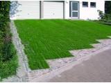Экопарковка (зеленая парковка) с газонными решетками ТТЕ