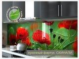Фото  1 Скинали из стекла - цветы красные маки, макро фото, красные головки. (Скіналі для кухні - квіти маки червоного кольору) 2109140