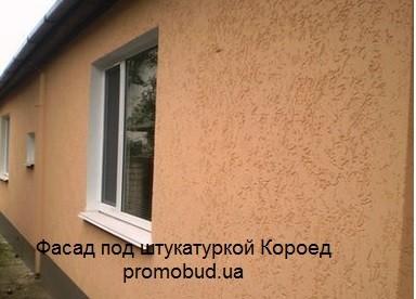 фасад частного дома под короедом фото