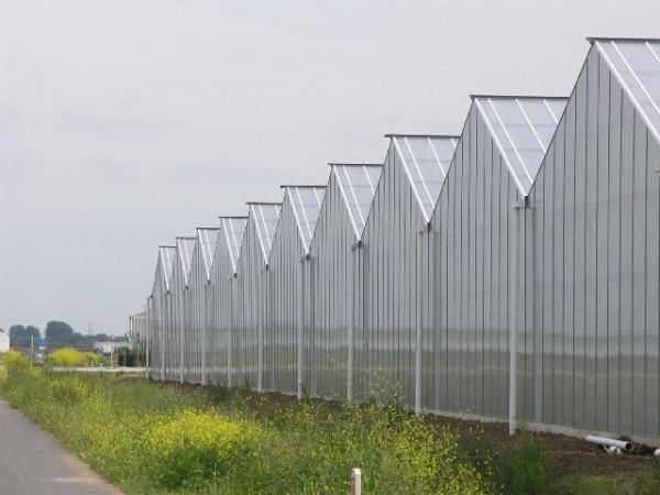 Фермерские, промышленные теплицы из поликарбоната